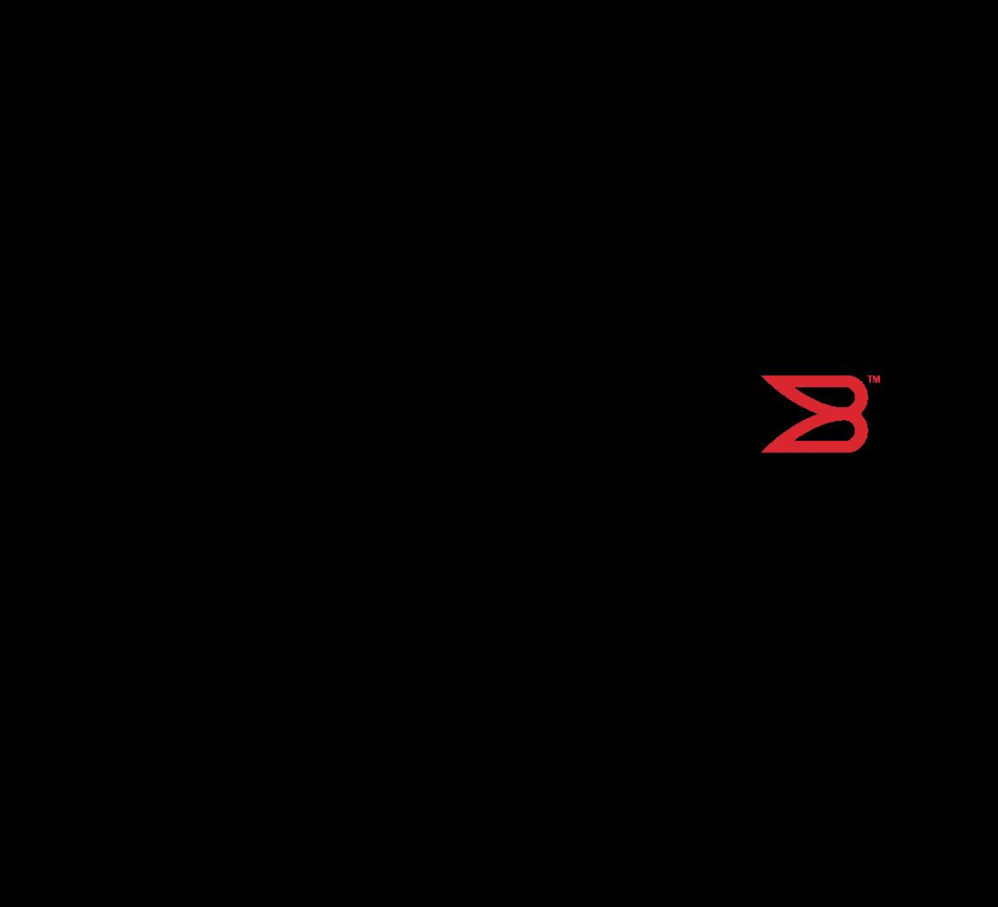 logo-1100x1000-brocade